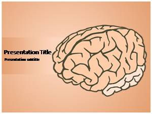 Human Brain Free Ppt Template Slide1