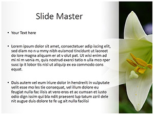 Whilte Tulip Free Ppt Template Slide2