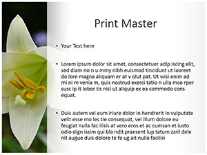 Whilte Tulip Free Ppt Template Slide3