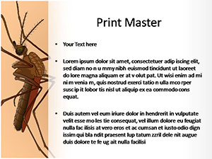 Free female mosquito powerpoint template and themes female mosquito free ppt template slide3 toneelgroepblik