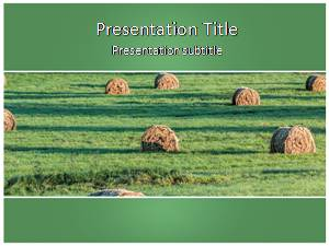 Bales Free Ppt Template Slide1