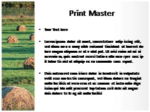 Bales Free Ppt Template Slide3