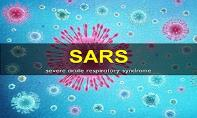 SARS (Severe Acute Respiratory Syndrome) PowerPoint Presentation