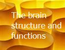 The brain structure and functions Powerpoint Presentation