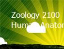 Zoology 2100 Human Anatomy Powerpoint Presentation