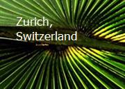 Zurich, Switzerland Powerpoint Presentation
