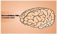 Human Brain Free Ppt Template