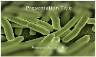 Koli Bacteria Free Ppt Template