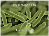 Free Koli Bacteria PowerPoint Template