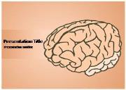 Premium Human Brain