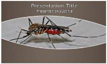Mosquito Free Ppt Templates