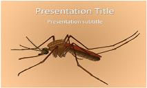 Female Mosquito Free Ppt Templates