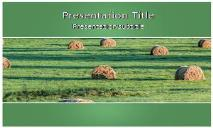 Bales Free Ppt Templates
