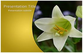 Free Whilte Tulip PowerPoint Template