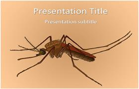 Free Female Mosquito PowerPoint Template