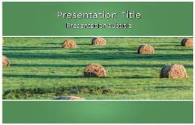 Free Bales PowerPoint Template