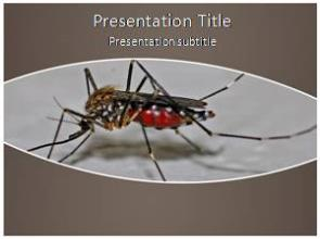 Mosquito Free PowerPoint Template