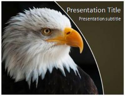 Eagles Free PowerPoint Template