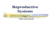 Reproductive Systems Powerpoint Presentation