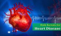 Risk Factors Of Heart Disease PowerPoint Presentation