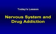 Nervous System And Drug Addiction PowerPoint Presentation