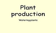 Plant Production Watering PowerPoint Presentation