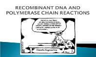 Recombinant Dna And Polymerase Chain Reaction PowerPoint Presentation