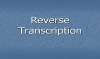 Reverse Transcription PowerPoint Presentation