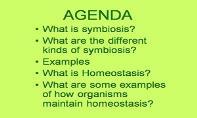 Symbiosis And Homeostasis PowerPoint Presentation