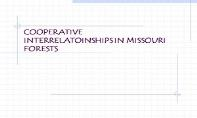 Cooperative Interrelatoinships In Missouri Forests PowerPoint Presentation