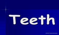 Teeth PowerPoint Presentation