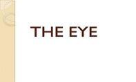The Eye PowerPoint Presentation