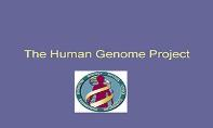 The Human Genome Project PowerPoint Presentation