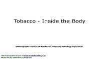 Tobacco PowerPoint Presentation