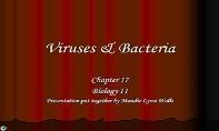 Viruses PowerPoint Presentation
