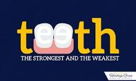 Teeth: The Strongest And The Weakest PowerPoint Presentation