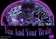 You and Your Brain Powerpoint Presentation