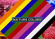 Nature Colors Powerpoint Presentation
