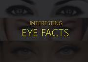 Interesting Eye Facts Powerpoint Presentation