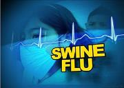 Influenza H1N1 (Swine Flu ) Powerpoint Presentation