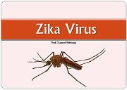 Zika Virus Disease Powerpoint Presentation