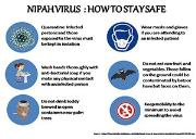 Nipah Virus Cure Tips Powerpoint Presentation