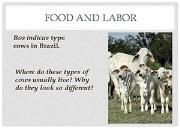 Food And Labor Powerpoint Presentation