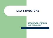 Dna Structure Powerpoint Presentation