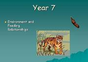 Environment And Feeding Relationships Powerpoint Presentation