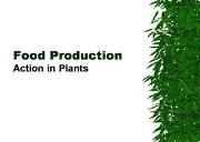 Food Production & The Environment Powerpoint Presentation