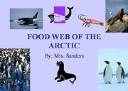 Food Web Of The Arctic Powerpoint Presentation