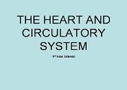 Heart And Circulatory System Powerpoint Presentation