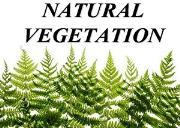 Natural Vegetation Powerpoint Presentation