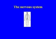 The Nervous System & Sensitivity Powerpoint Presentation